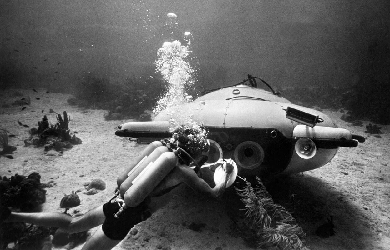 Кусто подводой