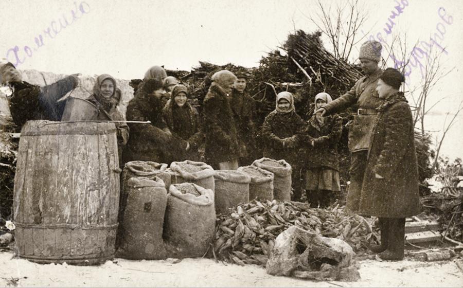 Изъятие овощей у крестьян села Ново-Красное Одесской области