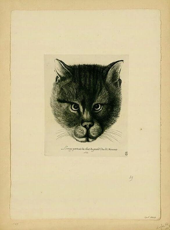 Картина кота царя