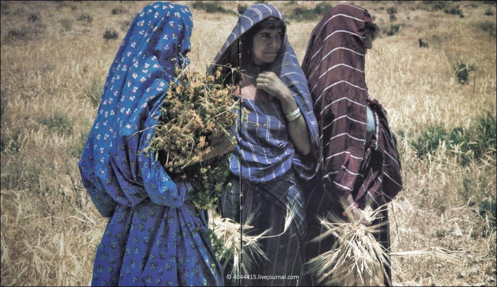 Женщины в Ливии, 80-е годы / Фотоальбом «Ливийская Джамахирия»
