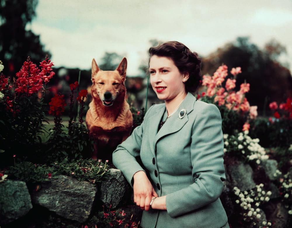 Елизавета и Сьюзен в замке Балморал, 1952 год