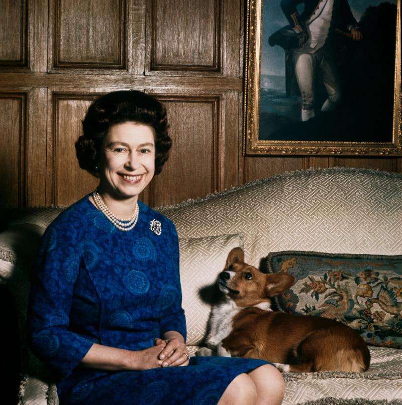 Елизавета II и ее корги, 4 февраля 1970 года
