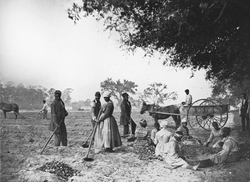 Рабы на плантации Хопкинсона, 1862 год / Нью-Йоркское историческое общество, США